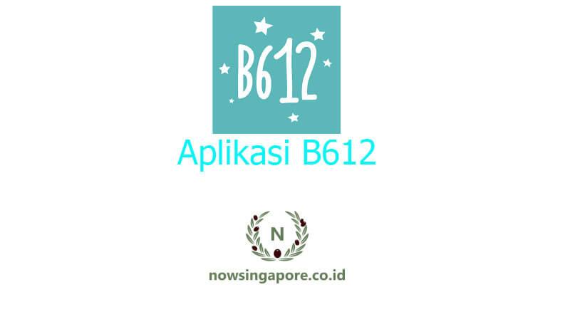 Aplikasi B612 Prediksi Wajah Bayi